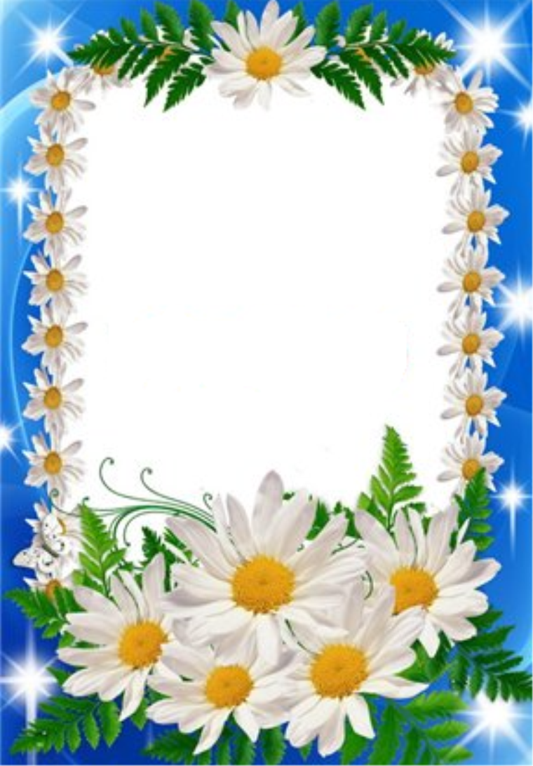 Картинки для портфолио ромашки