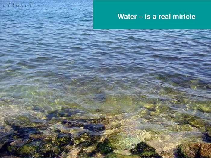 Water – is a real miricle