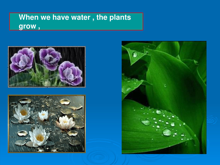 When we have water , the plants grow ,