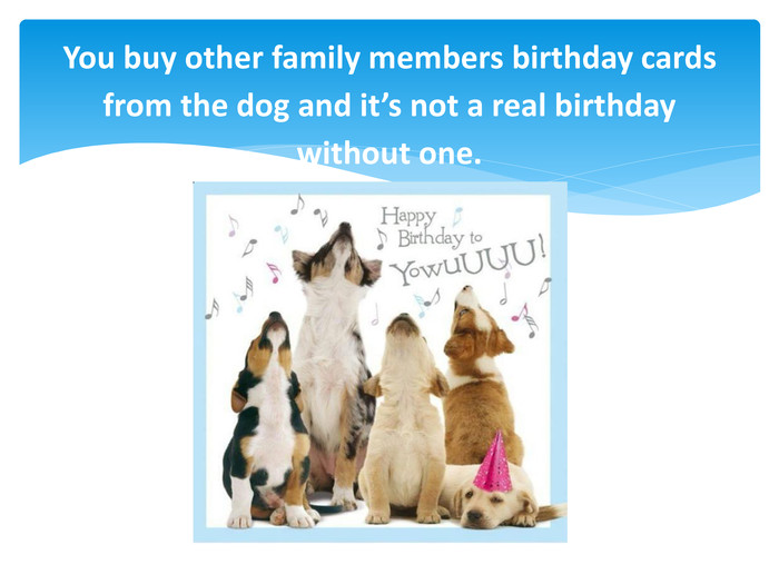 You buy other family members birthday cards from the dog and it's not a real birthday without one.