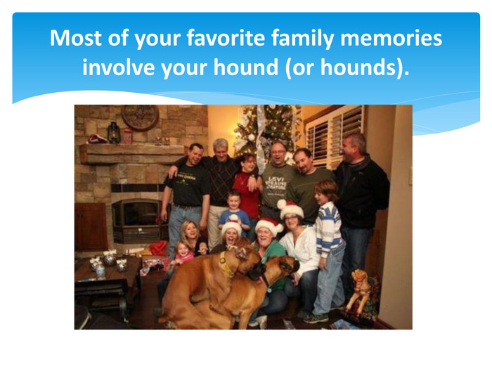 Most of your favorite family memories involve your hound (or hounds).