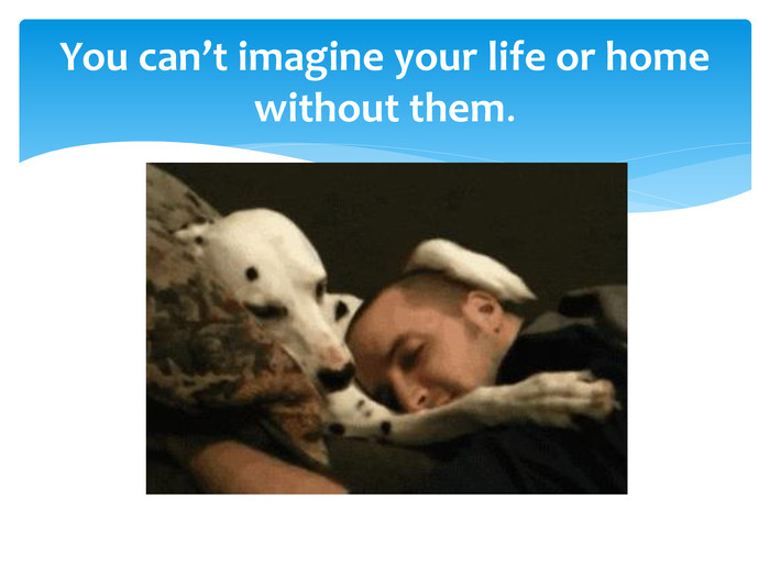 You can't imagine your life or home without them.