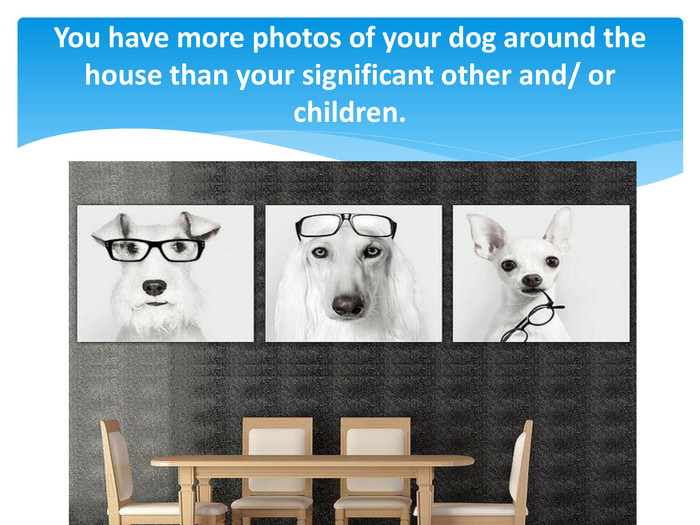 You have more photos of your dog around the house than your significant other and/ or children.
