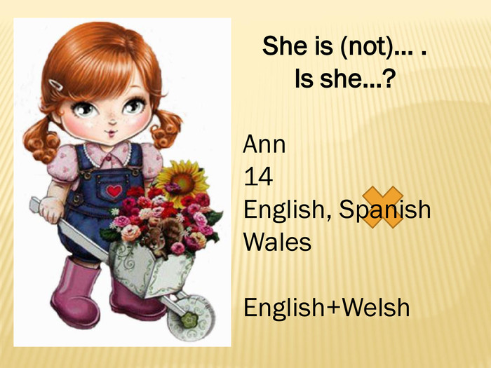 She is (not)… . Is she…?Ann14 English, Spanish. Wales. English+Welsh