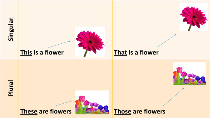 {C4 B1156 A-380 E-4 F78-BDF5-A606 A8083 BF9} Singular. This is a flower. That is a flower Plural. These are flowers. Those are flowers
