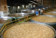tequila_fermenting_vats1