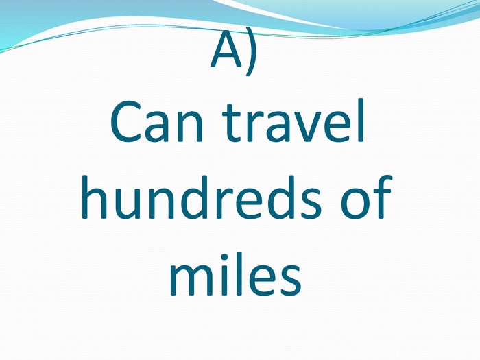 A) Can travel hundreds of miles