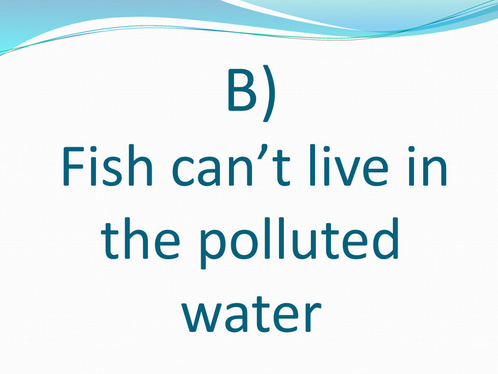 B) Fish can't live in the polluted water