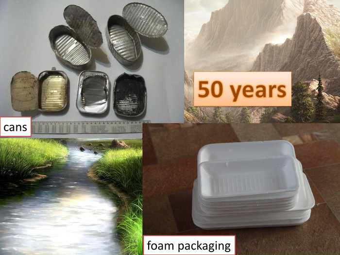 50 yearsfoam packagingcans