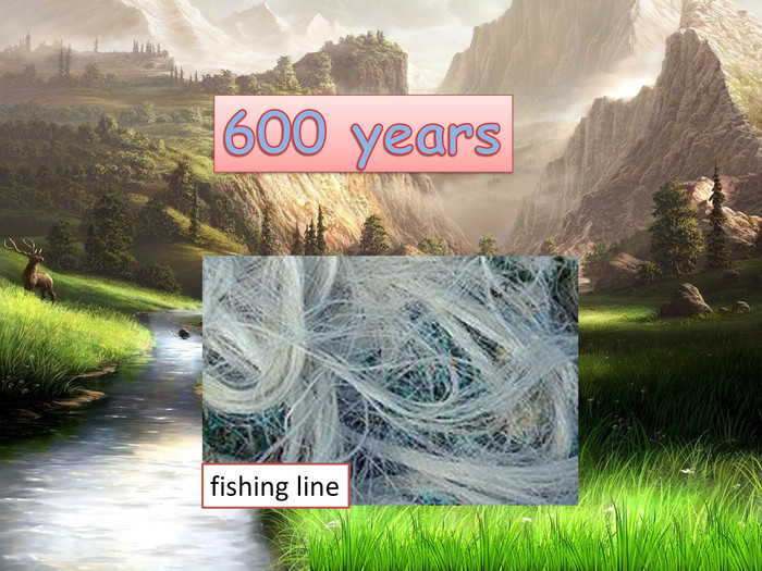 600 yearsfishing line