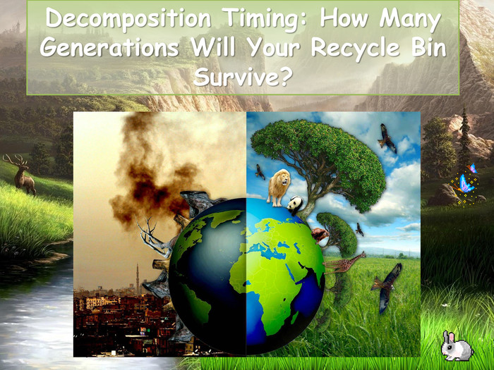 Decomposition Timing: How Many Generations Will Your Recycle Bin Survive?