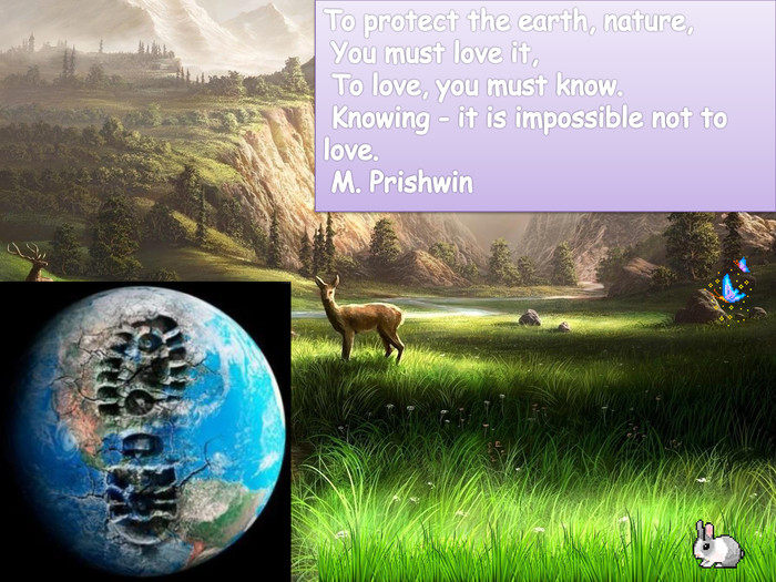 To protect the earth, nature, You must love it, To love, you must know. Knowing - it is impossible not to love. M. Prishwin
