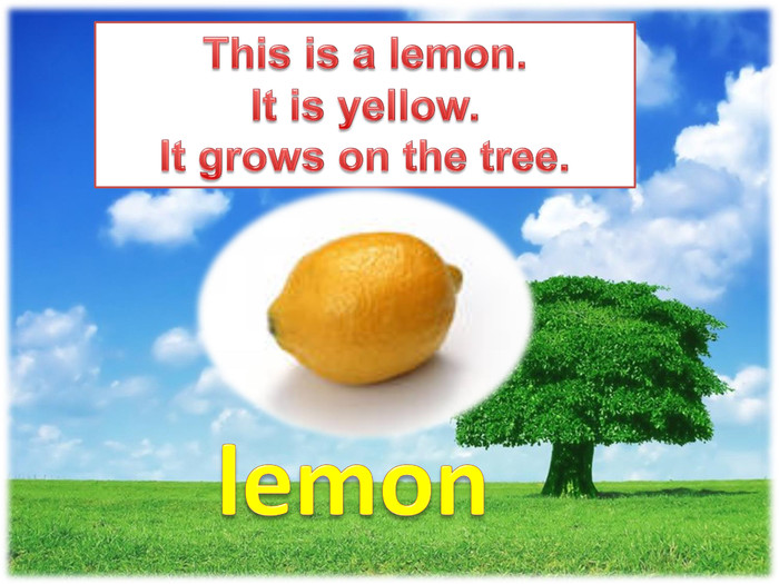 This is a lemon. It is yellow. It grows on the tree.lemon