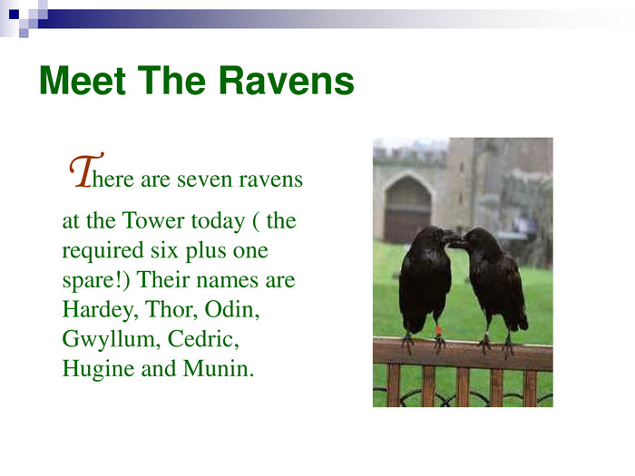 Meet The Ravens     There are seven ravens at the Tower today ( the required six plus one spare!) Their names are Hardey, Thor, Odin, Gwyllum, Cedric, Hugine and Munin.
