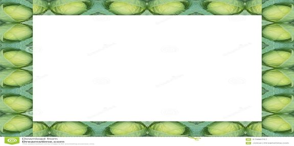 G:\все про капусту на курси\green-cabbage-frame-isolated-white-background-57990757.jpg