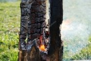 depositphotos_10615070-stock-photo-smouldering-tree-trunk-burned-out.jpg