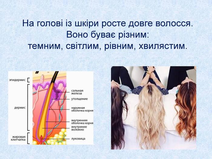 На голові із шкіри росте довге волосся. Воно буває різним  темним 339e01c8c6e9e