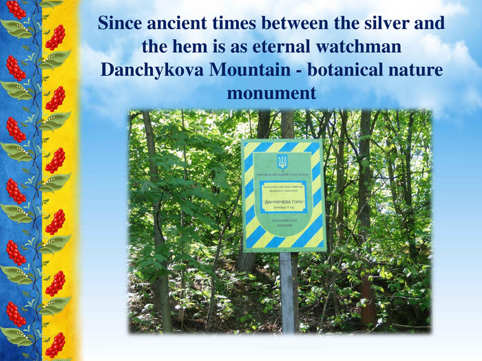 Since ancient times between the silver and the hem is as eternal watchman Danchykova Mountain - botanical nature monument