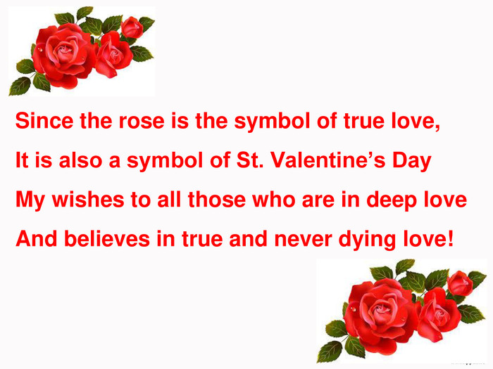 Since the rose is the symbol of true love, It is also a symbol of St. Valentine's Day My wishes to all those who are in deep love And believes in true and never dying love!