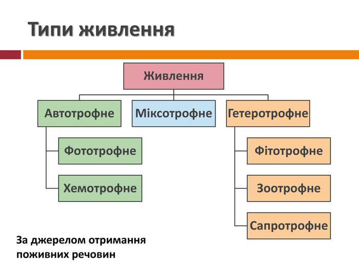Гетеротрофний тип живлення рослин з еколог