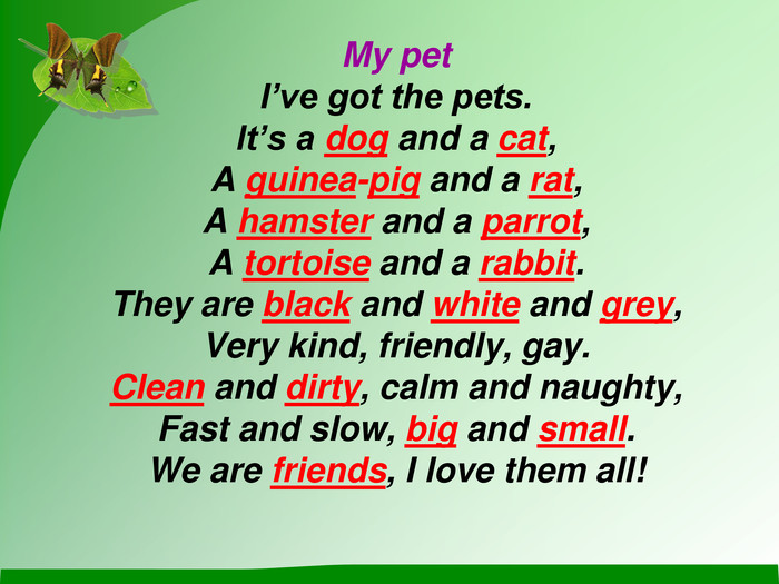My pet I've got the pets. It's a dog and a cat, A guinea-pig and a rat, A hamster and a parrot,  A tortoise and a rabbit. They are black and white and grey, Very kind, friendly, gay. Clean and dirty, calm and naughty, Fast and slow, big and small. We are friends, I love them all!