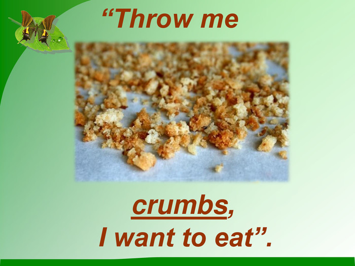 """Throw me crumbs, I want to eat""."