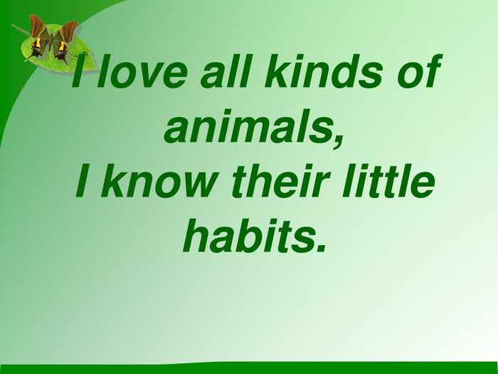 I love all kinds of animals, I know their little habits.