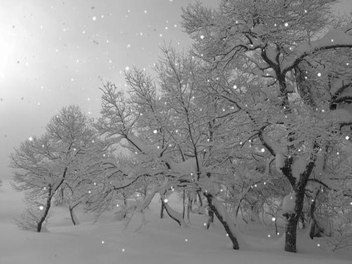 Картинки с анимацией падающий снег, поттер приколы картинки