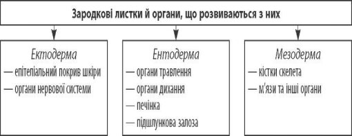 C:\Documents and Settings\дом\Мои документы\Downloads\media\image1.jpeg