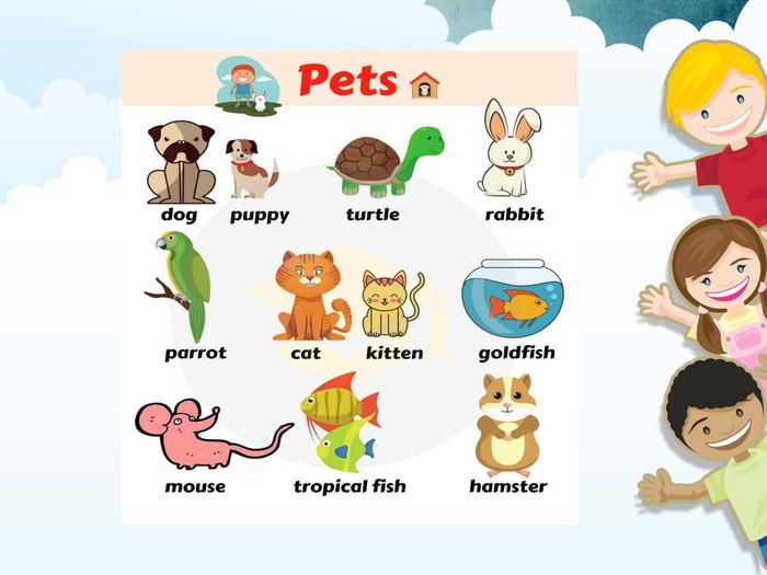 """Презентація з англійської мови для 1 класу на тему """"Тварини"""""""