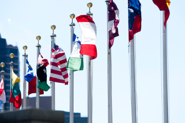 Flags of the Members States outside the United Nations Secretariat building
