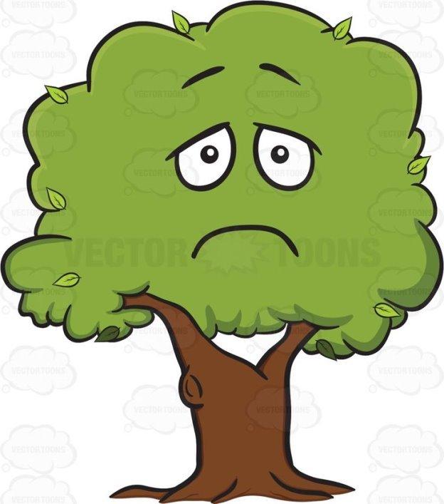 зависит грустное дерево рисунок трк вегас около