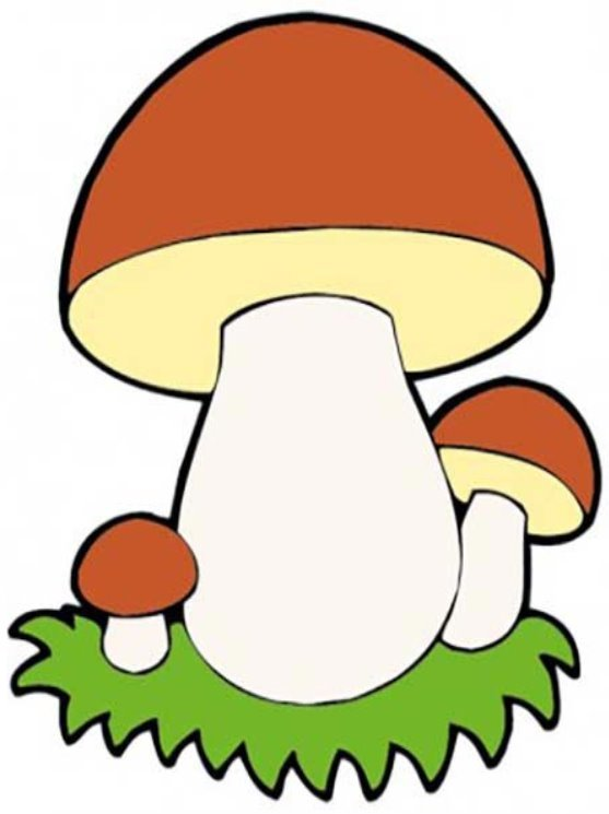 нередко картинка гриба боровика для презентации многих повлияла
