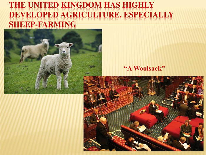 "The United Kingdom has highly developed agriculture, especially sheep-farming""A Woolsack"""