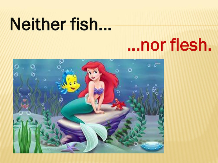 Neither fish……nor flesh.style.colorfillcolorfill.type