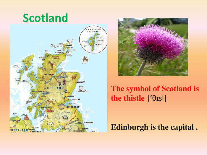 Scotland. The symbol of Scotland is the thistle |'θɪsl| Edinburgh is the capital .