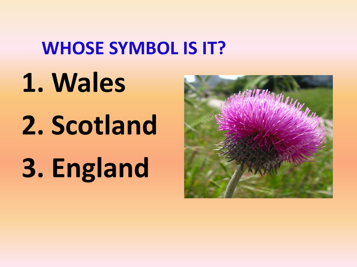 1. Wales2. Scotland3. England WHOSE SYMBOL IS IT?