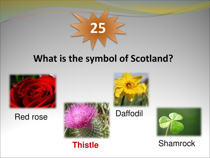 What is the symbol of Scotland?