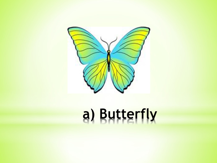 a) Butterfly