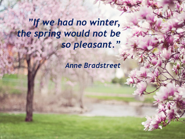 """If we had no winter, the spring would not be so pleasant."" Anne Bradstreet"