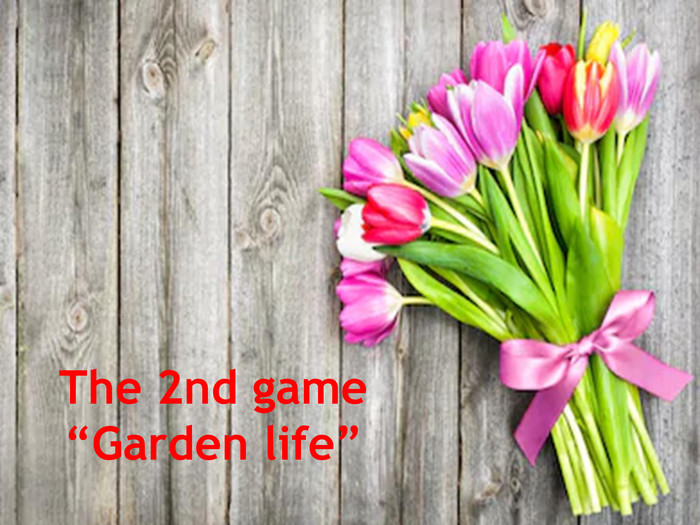 "The 2nd game ""Garden life"""