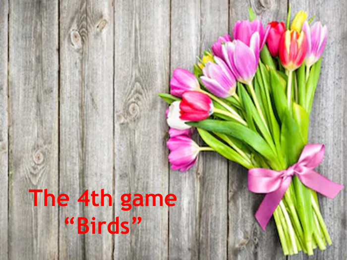 "The 4th game ""Birds"""