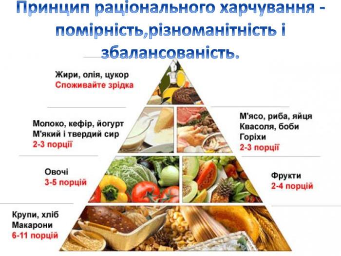 """Презентація до уроку з біології для учнів 8 - го класу на тему: """" Харчування і здоров'я""""."""