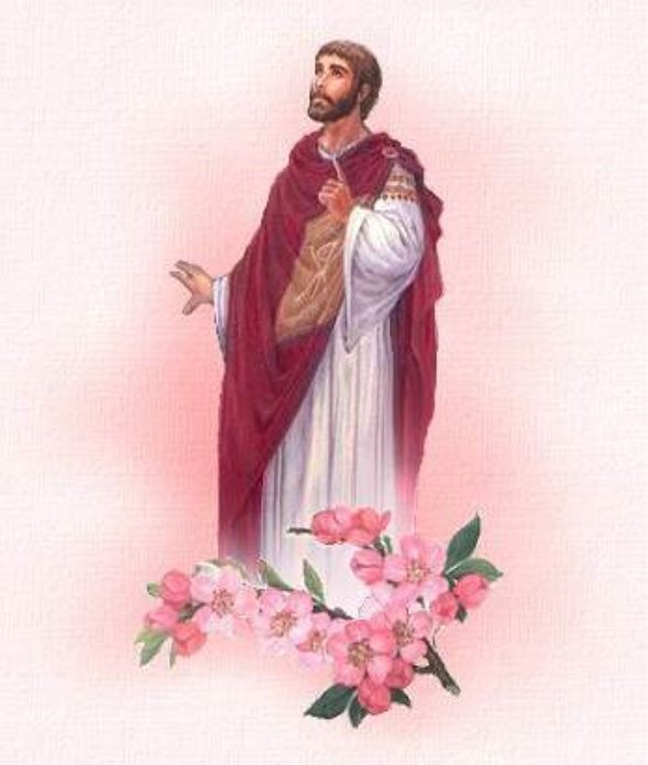 святой валентин фото картинки бюстгальтера, облегающие