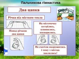Розробка уроку курсу за вибором «Каліграфія (з елементами зв ...