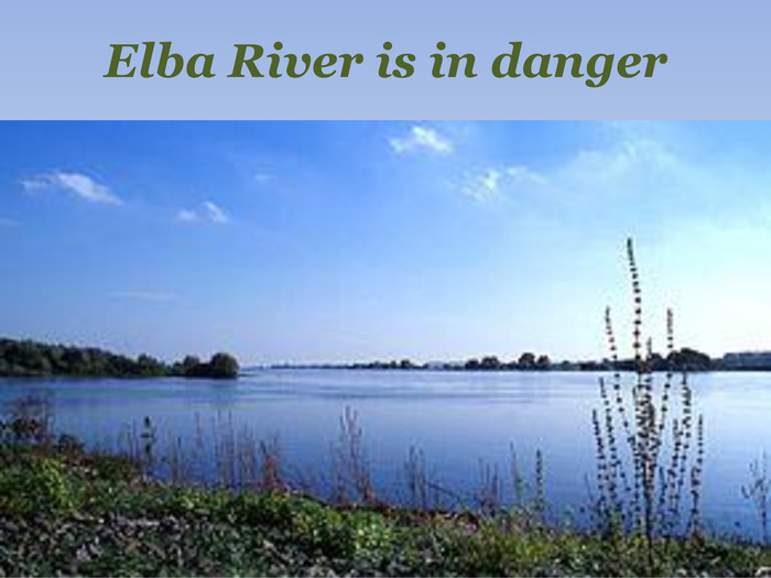 Elba River is in danger