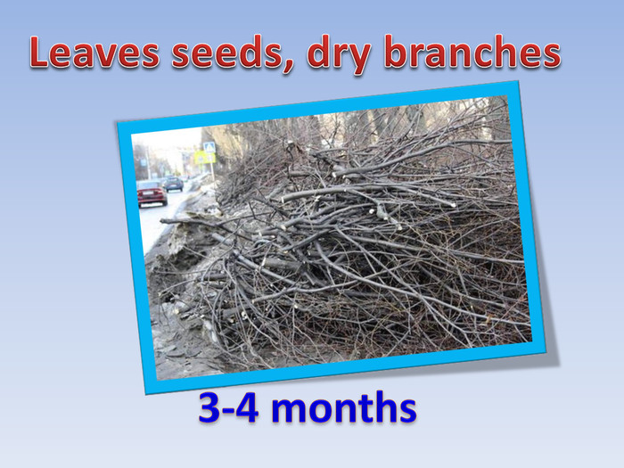 Leaves seeds, dry branches3-4 months