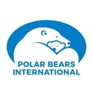 Світлина від Polar Bears International.