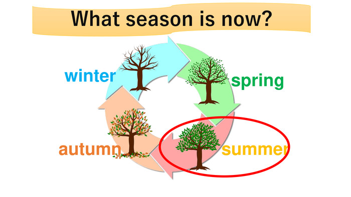 winterspringsummerautumn. What season is now?