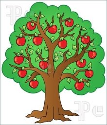 Apple Tree Illustration - GL Stock Images